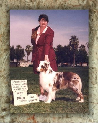 Dogs bred by Old West